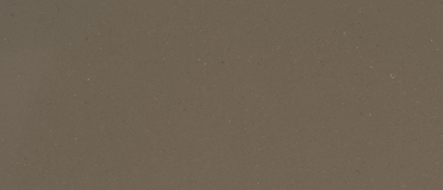 fossil-brown-quartz-1